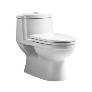 WHMFL3222-EB - Magic Flush Eco-Friendly One Piece Toilet with a Siphonic Action Dual Flush System,  Elongated Bowl, 1.6/1.1 GPF and WaterSense Certified